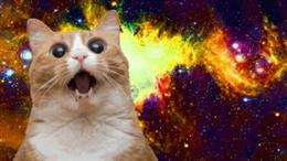 Video nguồn gốc các meme nổi tiếng nhất Internet