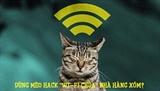 Biến một con mèo thành gián điệp chuyên hack Wi-Fi nhà hàng xóm?