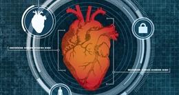 Mở khóa máy tính, điện thoại thông minh bằng nhịp tim