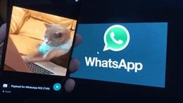 Điện thoại Android có thể bị hack chỉ bằng một hình GIF động?