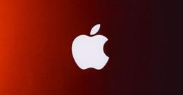 55 lỗ hổng bảo mật trên phần mềm và dịch vụ của Apple được phát hiện